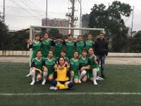 Giải bóng đá nữ 2017